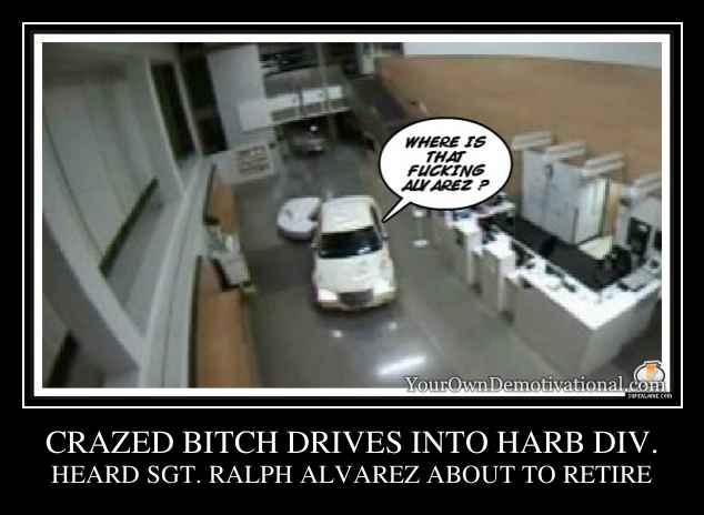 CRAZED BITCH DRIVES INTO HARB DIV.