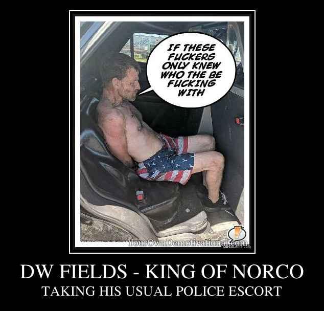DW FIELDS - KING OF NORCO