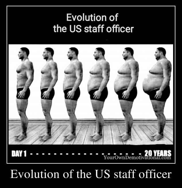 Evolution of the US staff officer