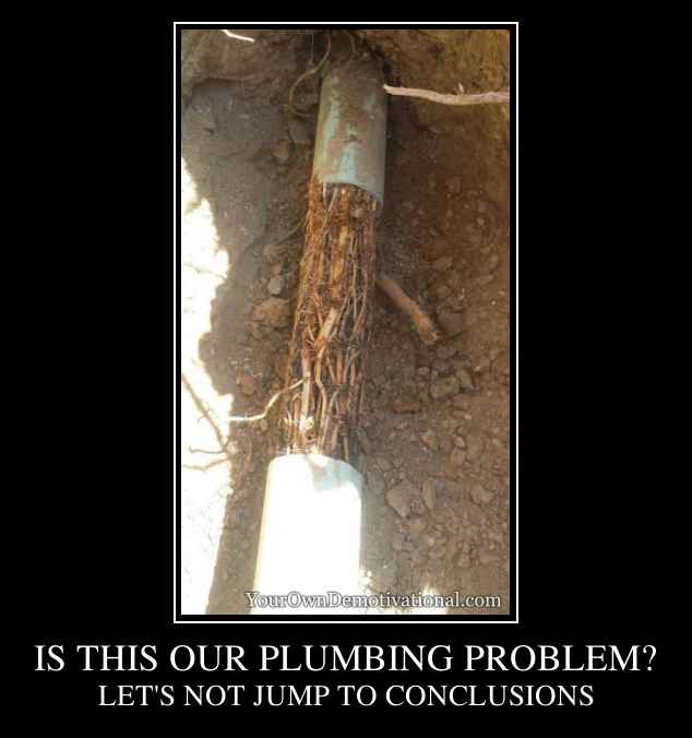 IS THIS OUR PLUMBING PROBLEM?