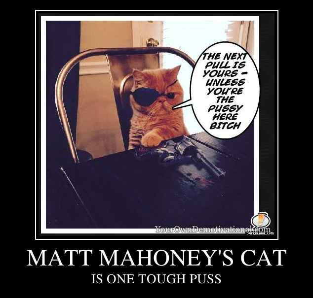 MATT MAHONEY'S CAT