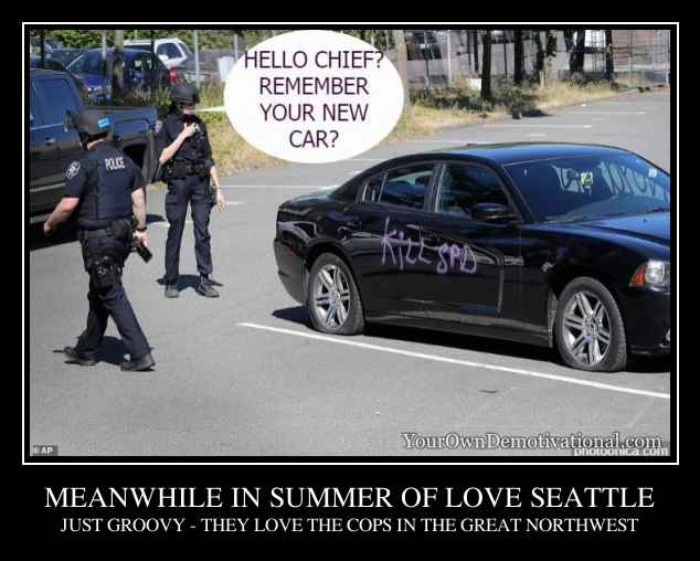 MEANWHILE IN SUMMER OF LOVE SEATTLE