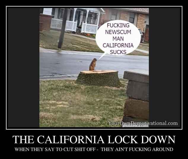 THE CALIFORNIA LOCK DOWN