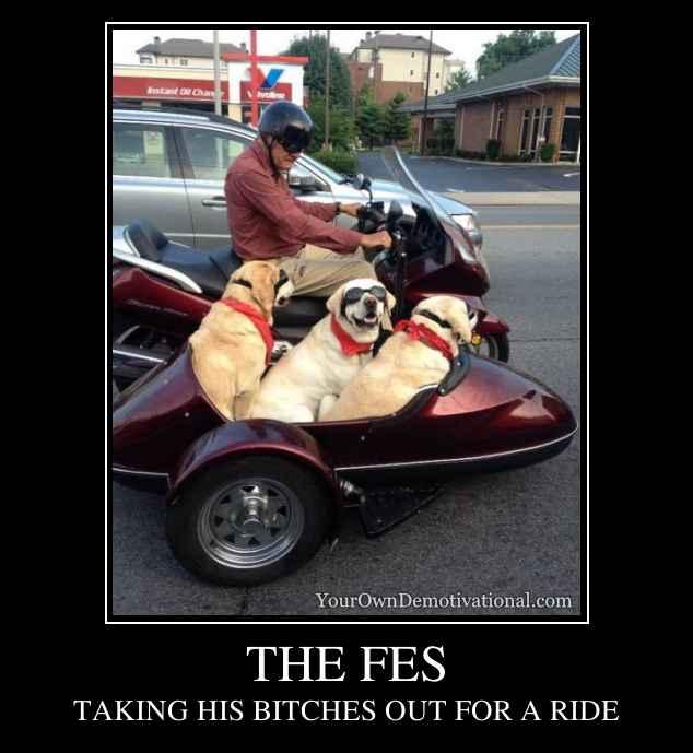 THE FES
