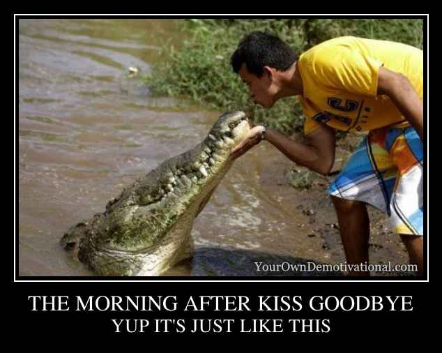 THE MORNING AFTER KISS GOODBYE