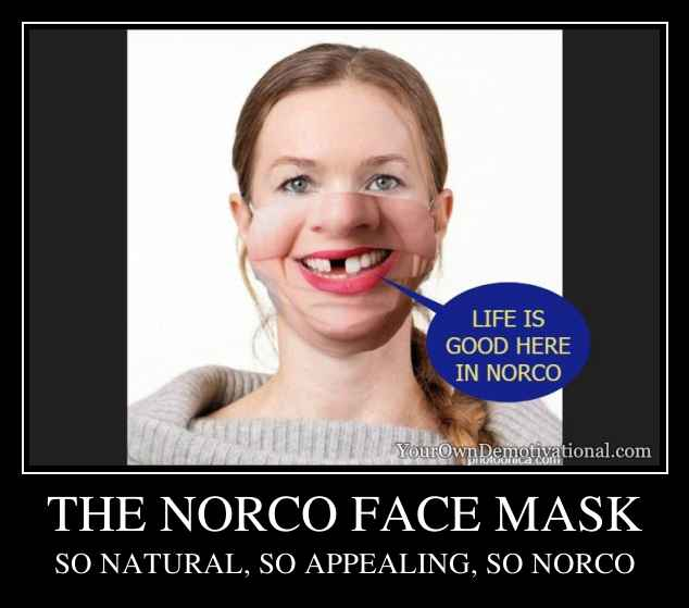 THE NORCO FACE MASK