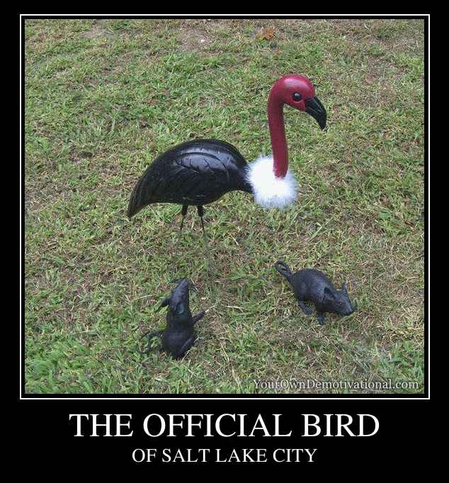THE OFFICIAL BIRD