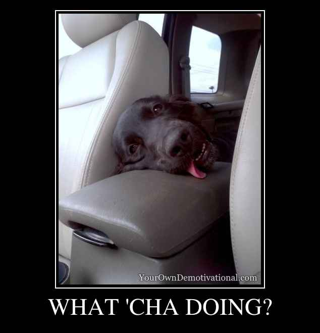 WHAT 'CHA DOING?